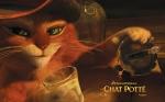 le_chat_potte_004