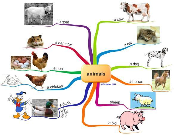 animals f