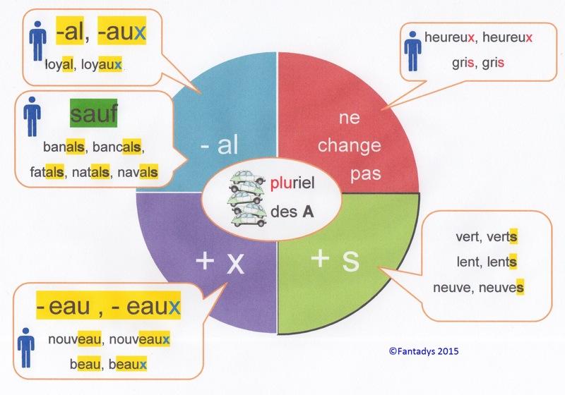 Резултат слика за pluriel des adjectifs des adjectifs