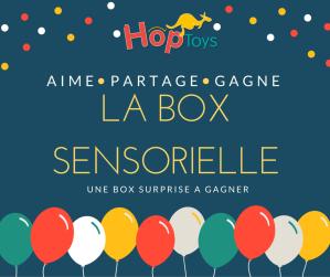 La Box Sensorielle x Hop'Toys