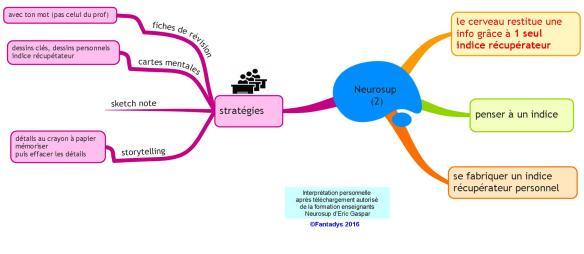 Neurosup (2) F
